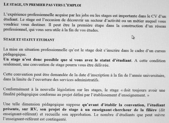 Stage En Licence Quel Interet Histoires D Universites