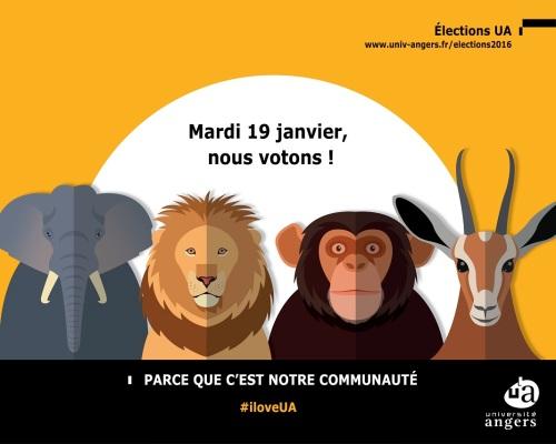 fond_ecran_1280x1024px_elections_2016